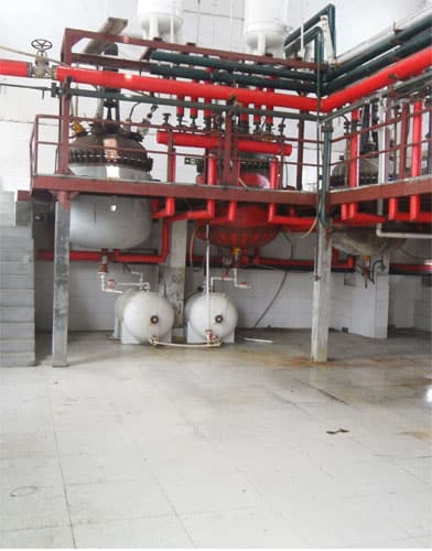 1-Methyl-2-pyrrolidinone factory