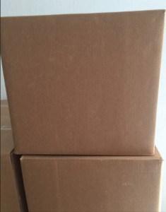 SAP Packing (1)