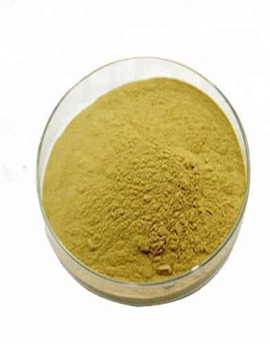 Caffeic Acid CAS 331-39-5 on Sale