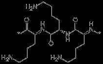 Polylysine CAS 25104-18-1