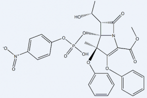 Proteinase K CAS 39450-01-6